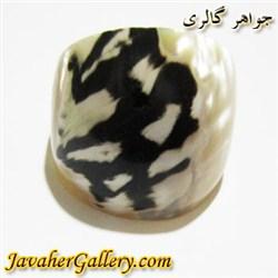 انگشتر صدف ( حلزون دریایی ) زیبا